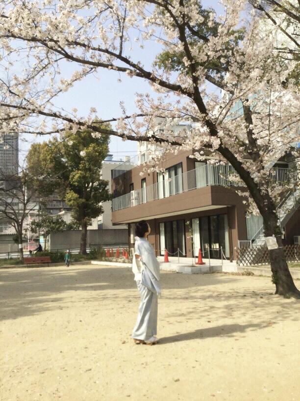 教室前の公園では桜が満開♪ お稽古の合間にお花見&撮影へ!