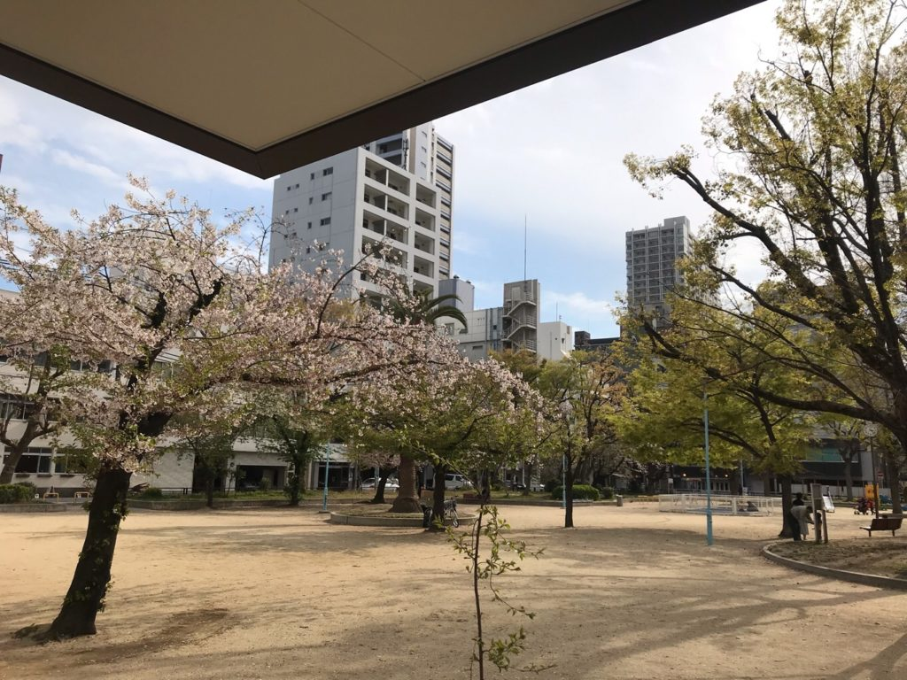 春の、とある日のお教室